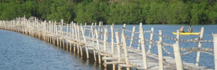 Tambobo bridge banner(2)